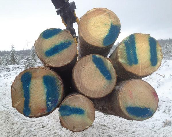 Blått märkning med Miljöfärg